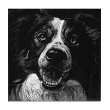Dramatic Border Collie Home / Tile Coaster