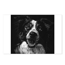 Dramatic Border Collie Postcards (Package of 8)