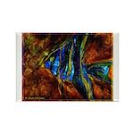 Angel Fish Rectangle Magnet