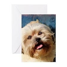 Shih-poo Greeting Cards (Pk of 10)