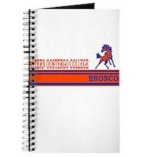Oostego Broncos Journal