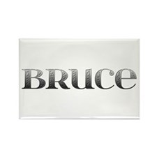 Bruce Carved Metal Rectangle Magnet