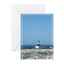 Lighthouse with Wildflowers Greeting Cards (Pk of
