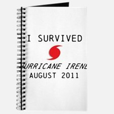 I survived Hurricane Irene Journal