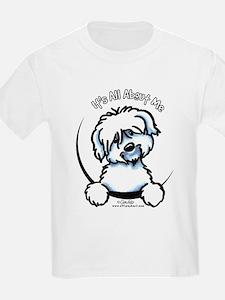 Coton de Tulear IAAM T-Shirt