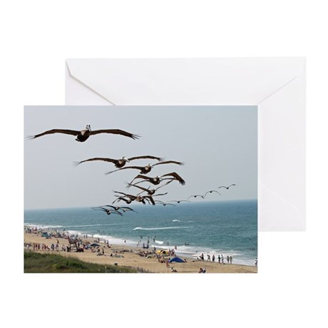 Cards & Gifts Greeting Cards (Pk of 20)