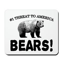Bears Mousepad