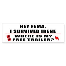 Hurricane Irene Car Sticker