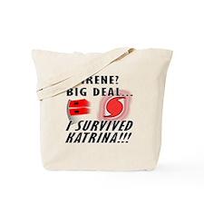 Hurricane Irene vs Katrina Tote Bag