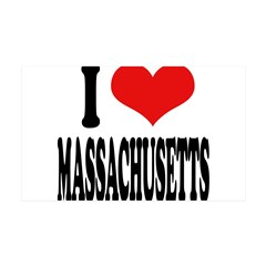 I Love Massachusetts 38.5 x 24.5 Wall Peel