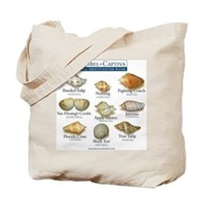 Shell I.D. Guide Tote or Beach Bag