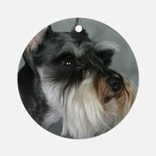 Profound Profile Ornament (Round)