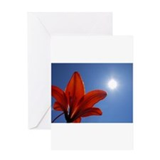 Tiger Lily Sunburst Greeting Card