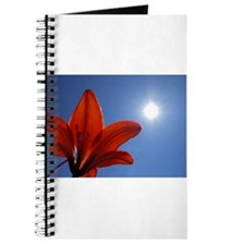 Tiger Lily Sunburst Journal