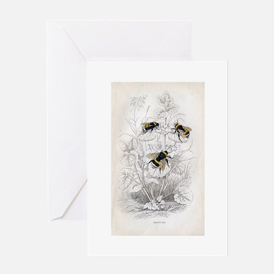 Vintage Bumble Bees Greeting Card