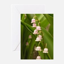 Lily of the Valley Greeting Cards (Pk of 10)