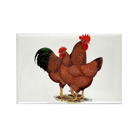 Production Red Chickens Rectangle Magnet (100 pack