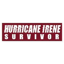 Hurricane Irene Survivor Bumper Sticker