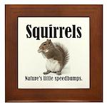 Squirrel Bumps Framed Tile