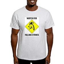 Watch for Falling Stones Ash Grey T-Shirt