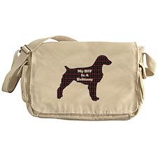 BFF Brittany Messenger Bag