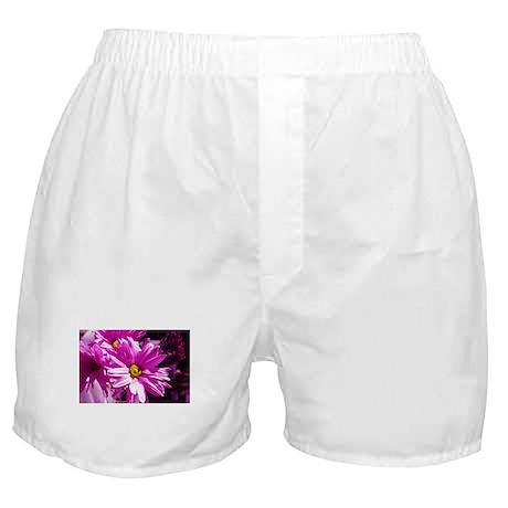 Pink Daisies Boxer Shorts