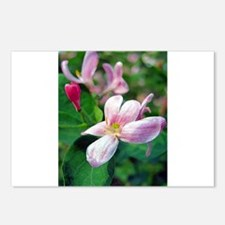 Floral Art Postcards (Package of 8)