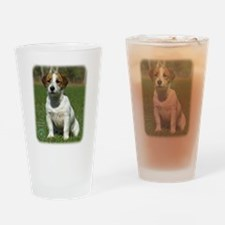 Jack Russell Terrier 9M097D-068 Drinking Glass