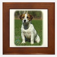 Jack Russell Terrier 9M097D-068 Framed Tile