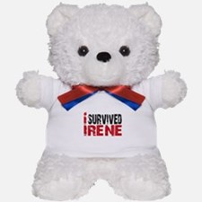 Hurricane Irene Teddy Bear