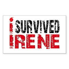 Hurricane Irene Sticker (Rectangle 10 pk)