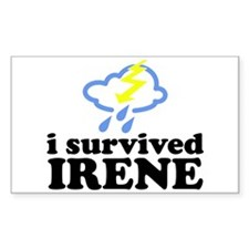 I Survived Irene Decal
