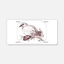 Baby Mourning Dove Aluminum License Plate