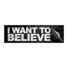 Believer 42x14 Wall Peel