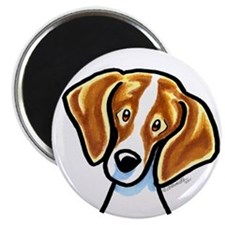 Red White Beagle Face Magnet