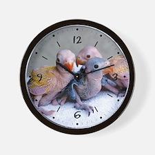 Baby Ringnecks Wall Clock