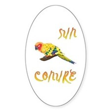 Sun Conure Oval Decal