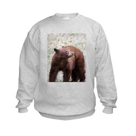 Brown Bear Kids Sweatshirt