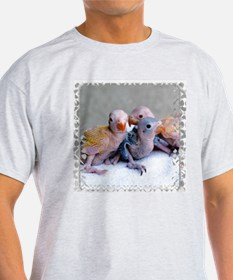 Baby Ringnecks Ash Grey T-Shirt