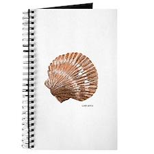 Scallop Shell Journal