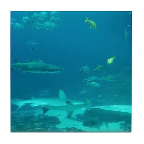 shark world Tile Coaster