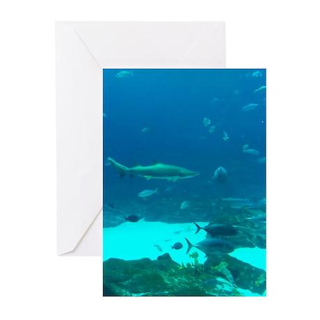 shark 2 Greeting Cards (Pk of 10)