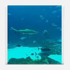 shark 2 Tile Coaster