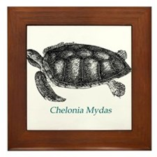Green Sea Turtle Framed Tile