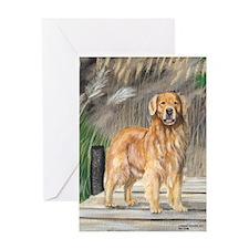 Golden Dock Dog Greeting Card