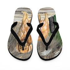 Golden Dock Dog Flip Flops