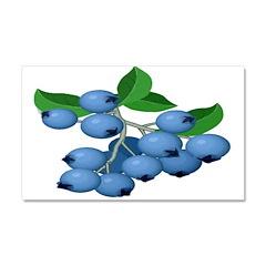 Blueberries Car Magnet 20 x 12