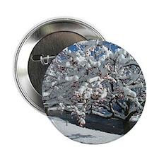 """Rock Climbing 3.5"""" Button (100 pack)"""