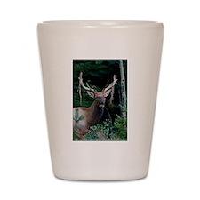 Elk colorado Shot Glass