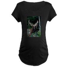 Elk colorado T-Shirt